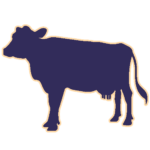 Коров'яче